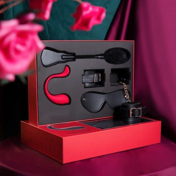 svakom-phoenix neo adult toy gift box for amazing sex